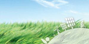 Groene energie is nog nooit zo populair geweest